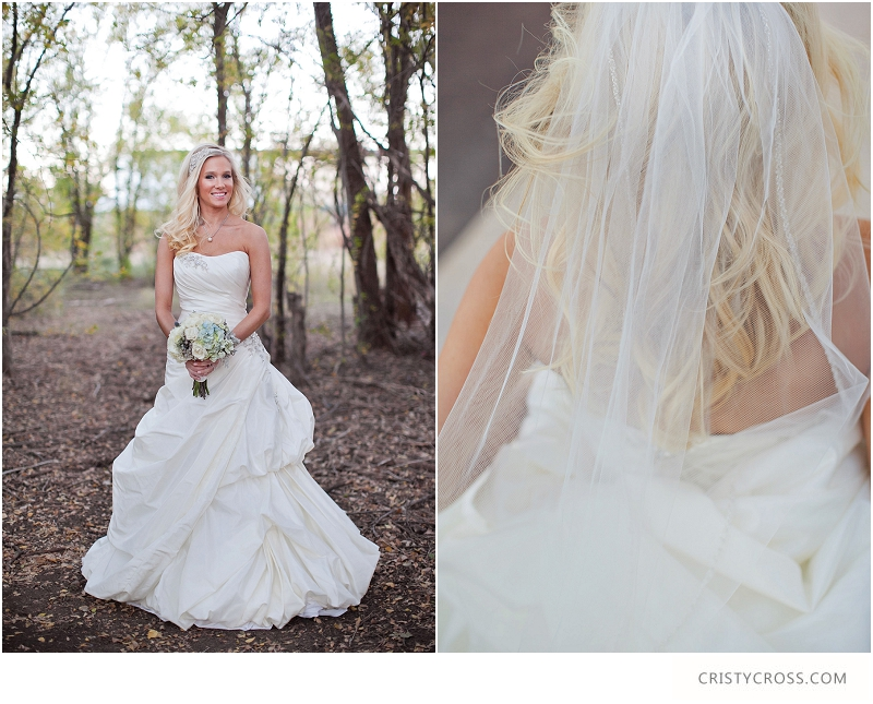 Courntey's Blue and White Bridal Shoot taken by Clovis Wedding Photographer Cristy Cross_0034.jpg