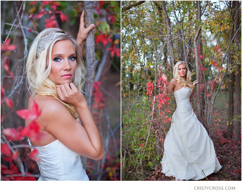 Courntey's Blue and White Bridal Shoot taken by Clovis Wedding Photographer Cristy Cross_0035.jpg