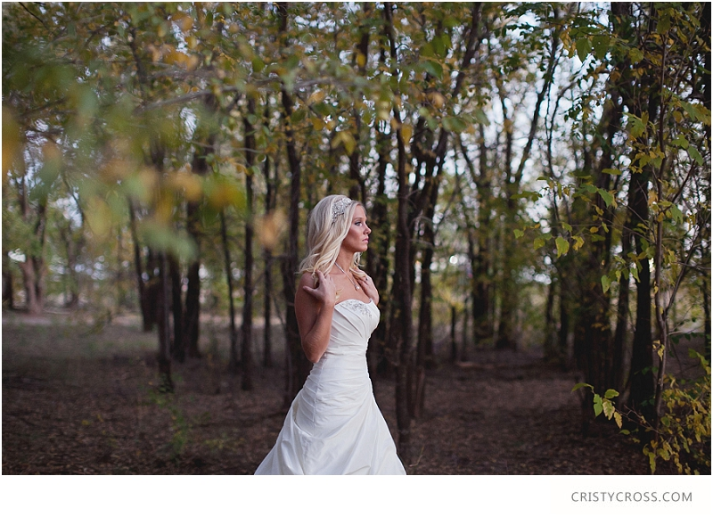 Courntey's Blue and White Bridal Shoot taken by Clovis Wedding Photographer Cristy Cross_0036.jpg