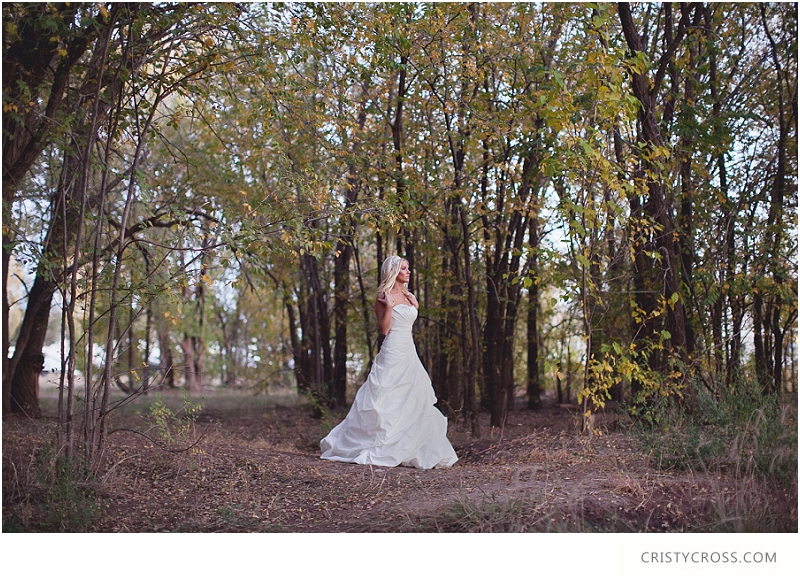 Courntey's Blue and White Bridal Shoot taken by Clovis Wedding Photographer Cristy Cross_0037.jpg