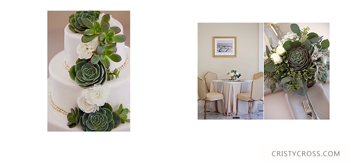 Succulent Wedding Ideas taken by Clovis Wedding Photographer Cristy Cross_0006.jpg