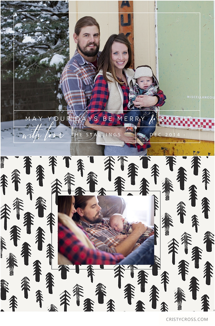 2014 Christmas Cards_0007.jpg