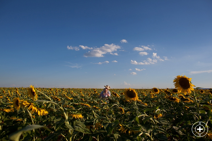 West Texas Sunflower Field Mini Session_0001.jpg