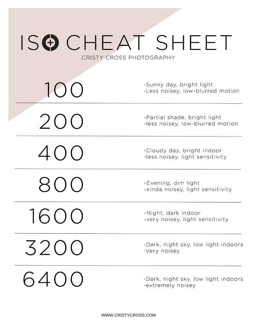 ISO cheat sheet.jpg