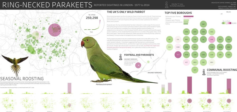 This is Jonni's stunning parakeet viz. You can check the interactive version out here