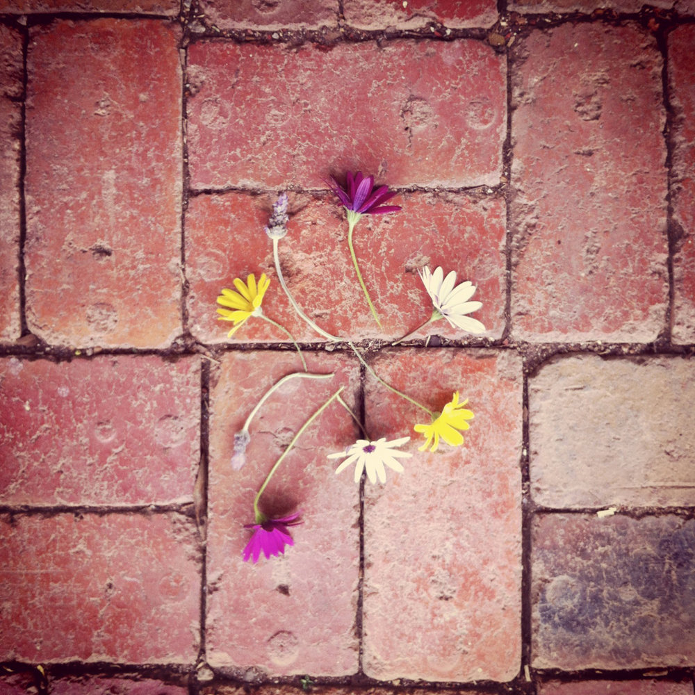 Flower circle III.jpg
