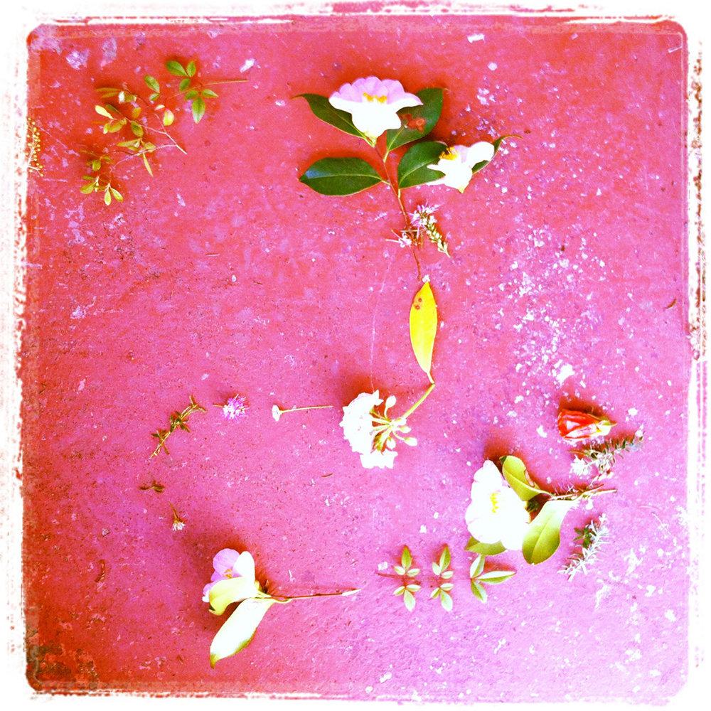 Flower trail, inkjet print, 20 x 20 cm