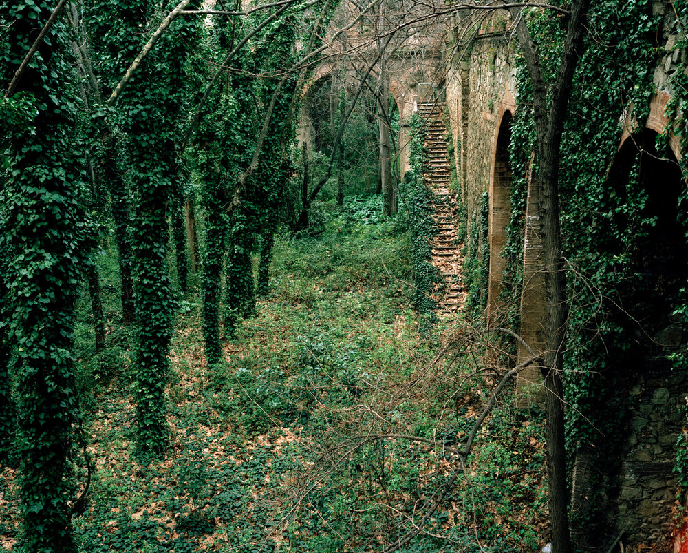Ivy bridges, chromogenic print, 62 x 79cm
