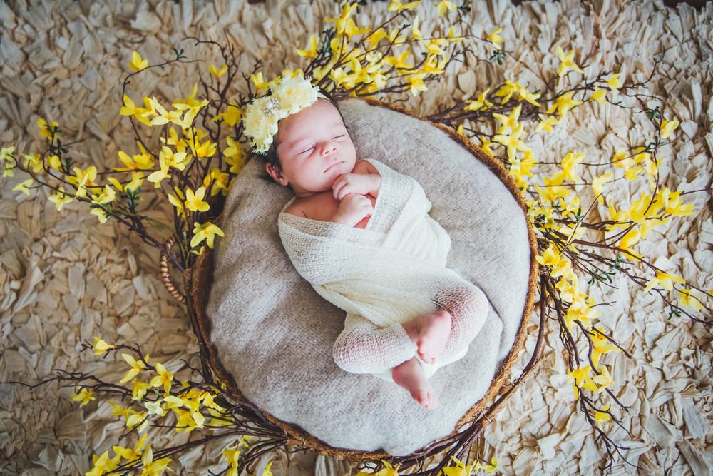 Orlando newborn pictures