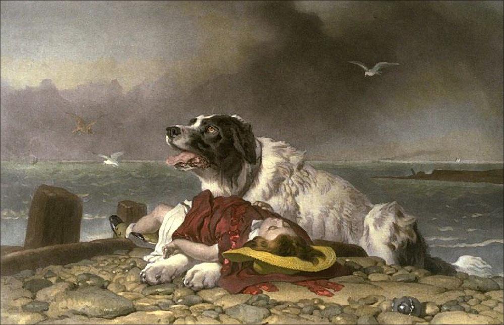 Pintura del perro de rescate Milo por Sir Edwin Henry Landseer en  nelights.com ➝