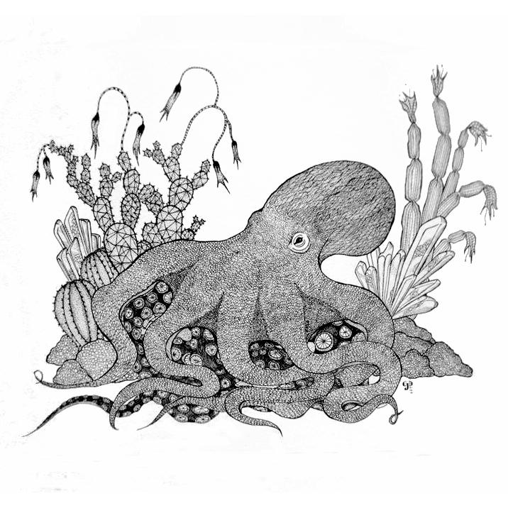 PORTFOLIO - octopus + crystal - square.jpg