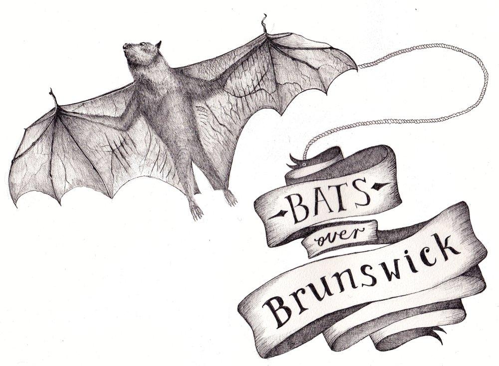 batsoverbrunswick_promo.jpg