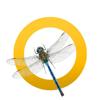 icons-imgs-dragonfly.jpg