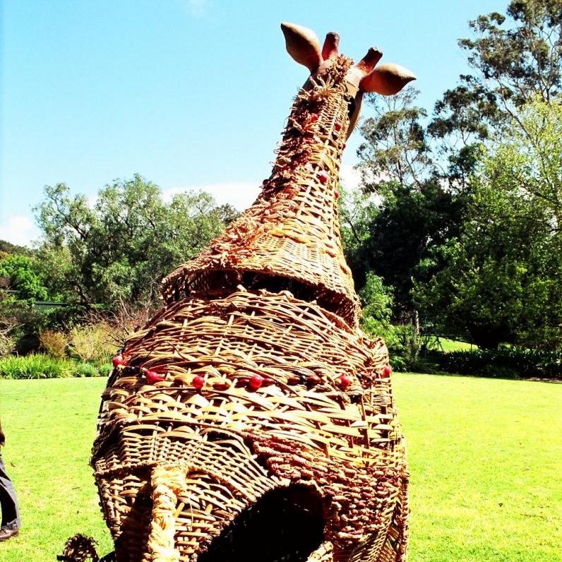 giraffe rear.jpg
