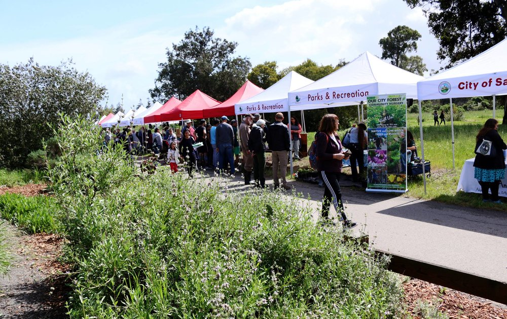 Booths at Wildflower Day 2018