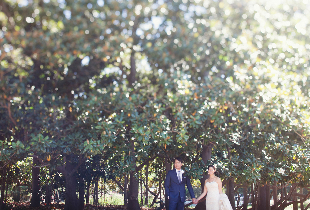 Abigail and Trung | Marin Art and Garden Center Ross Wedding