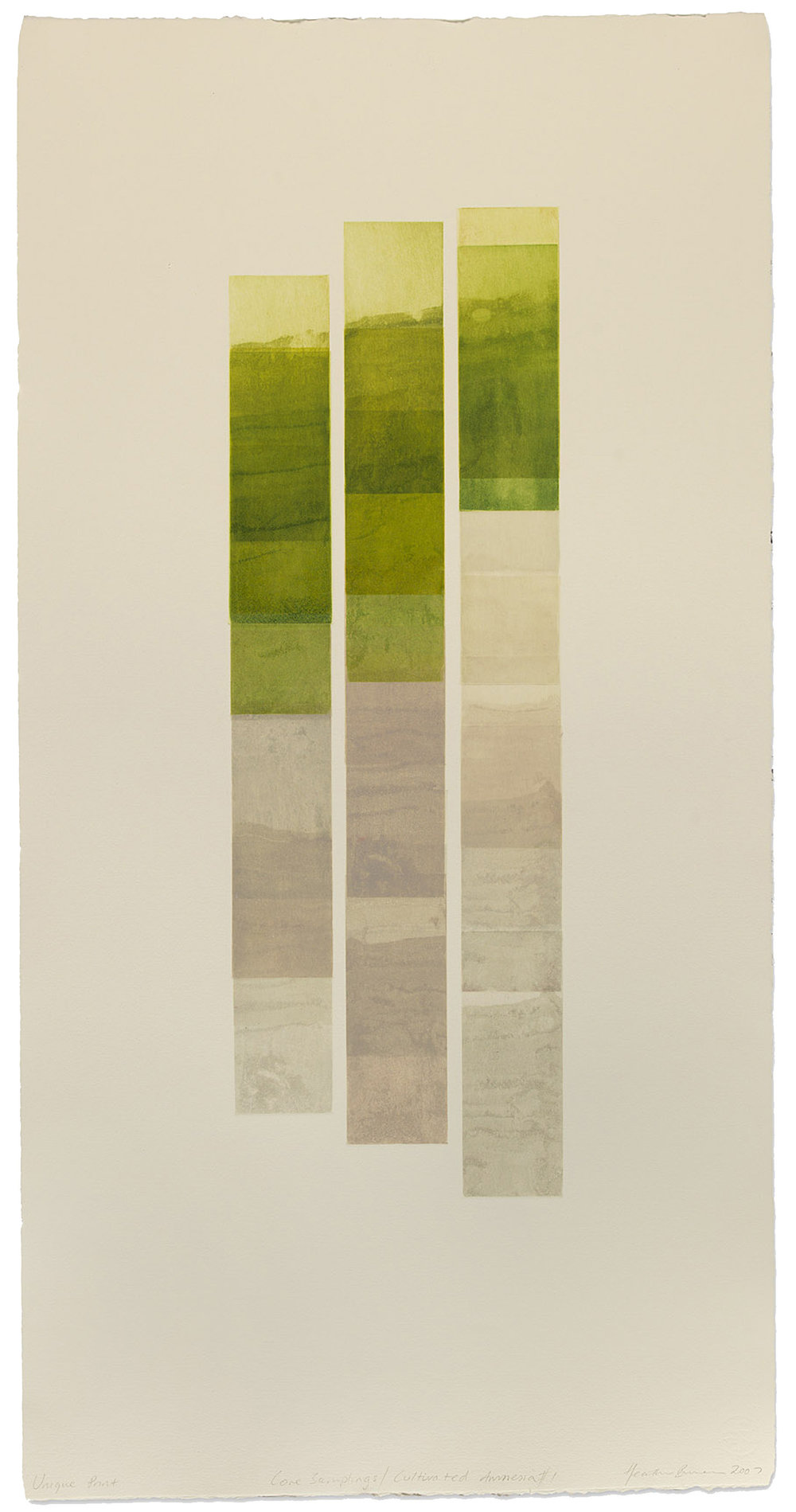 Core Samplings/ Cultivated Amnesia #1  etching 2008