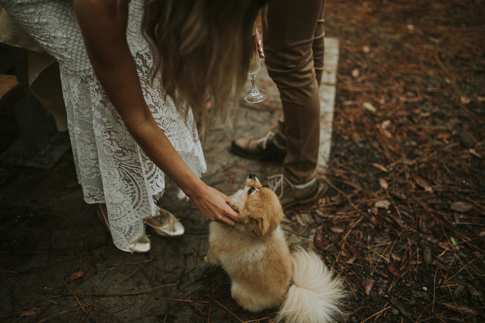 Courtney_Danny_Watagens_Elopement_Blog-53.jpg