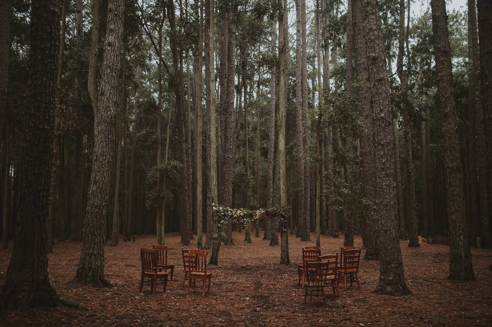 Watagens National Park elopement