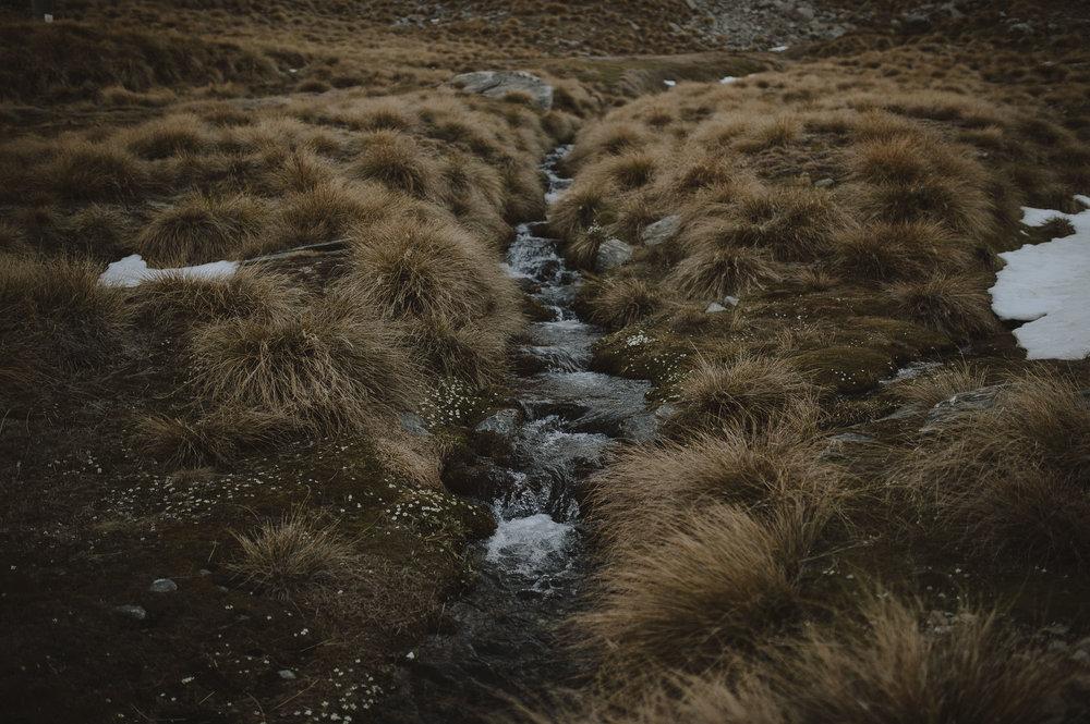Jess_Scott_Queenstown_New_Zealand_Anteloping_Elopement_Blog-84.jpg