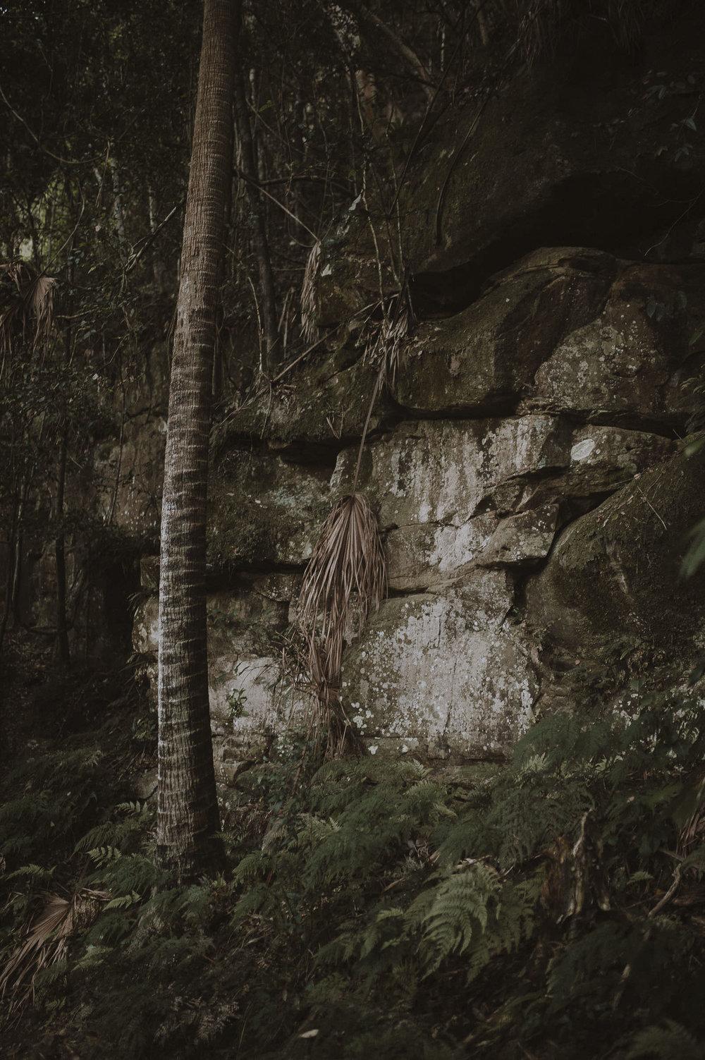 Madeleine_Nathan_Gap_Creek_Falls_Watagens_Anteloping_Elopement-77.jpg