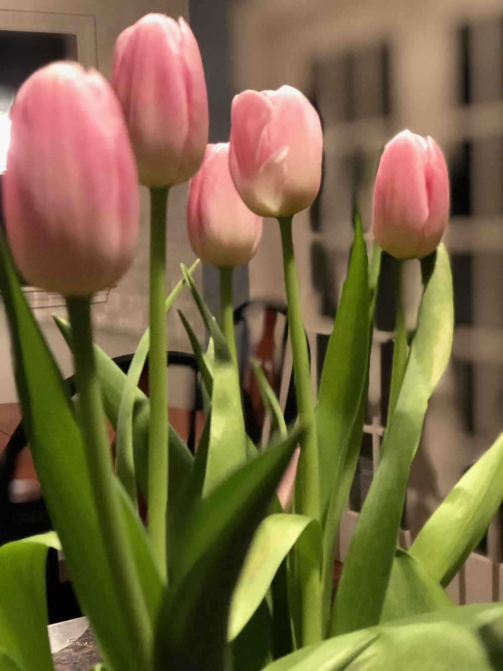 Decorating a home with Pink Tulips.jpg
