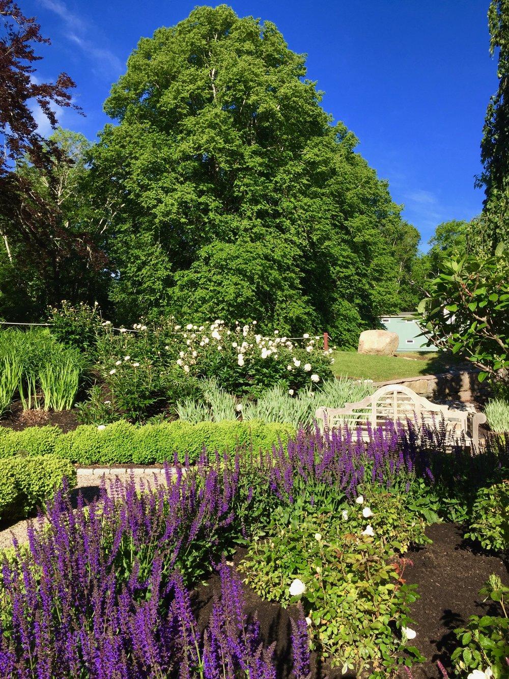 Sunken Garden 1.jpg