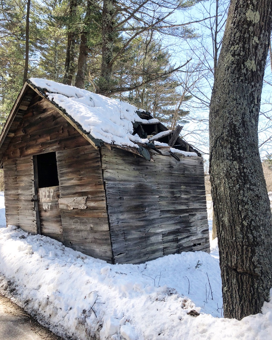old new england shed .jpg