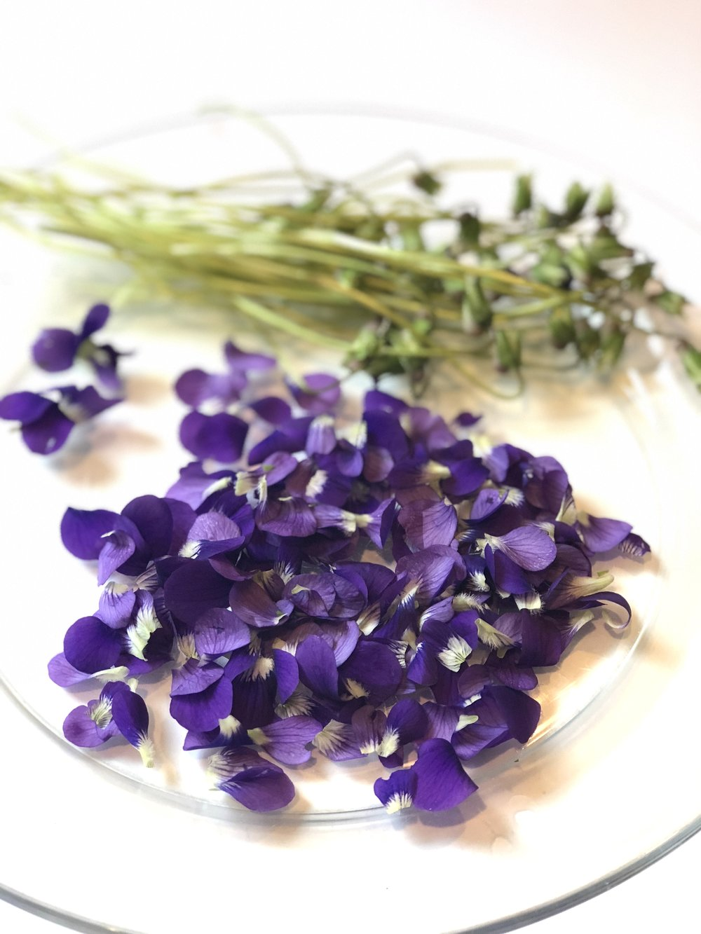 wild-violet-simple-syrup