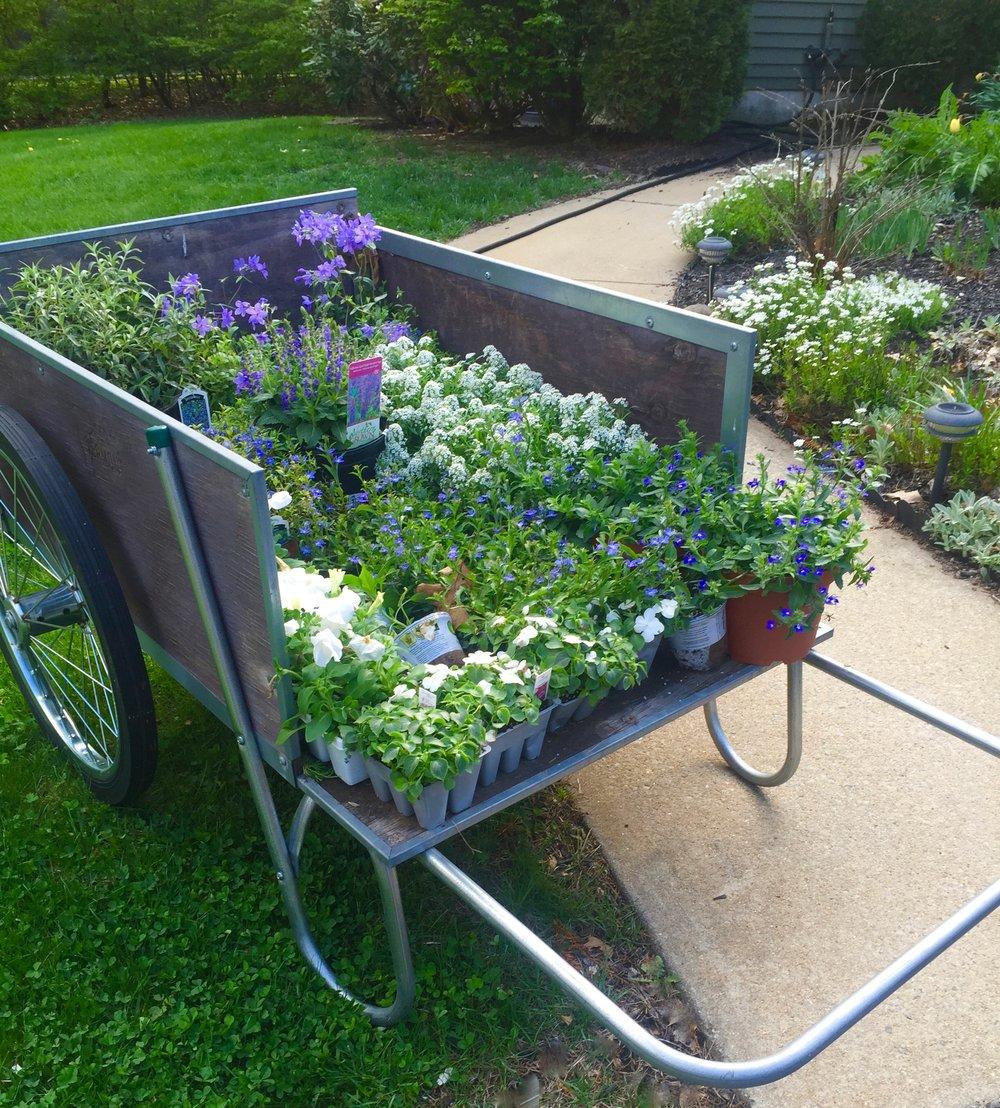 garden cart .jpg