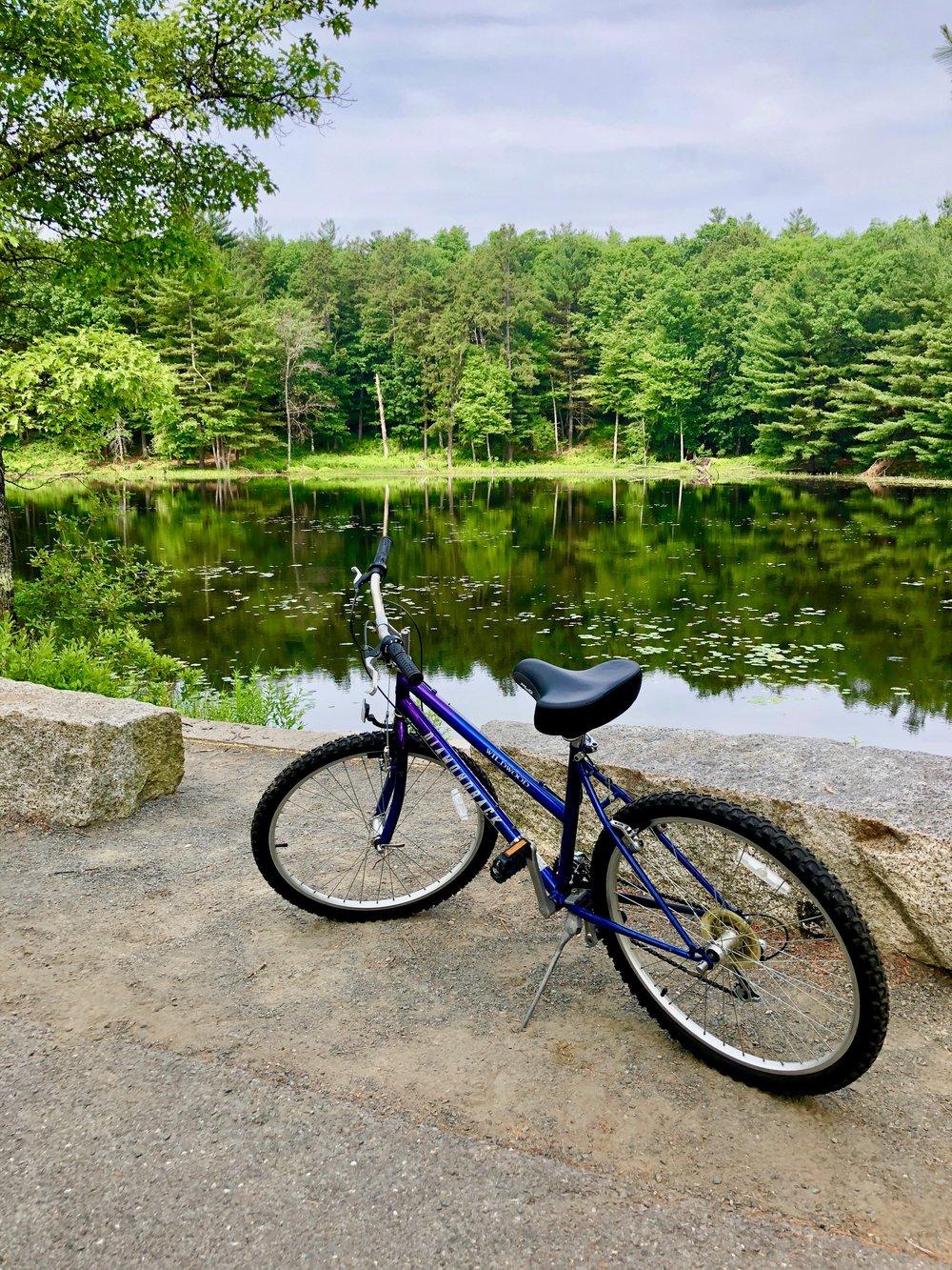 Biking the Rail Trail.jpg