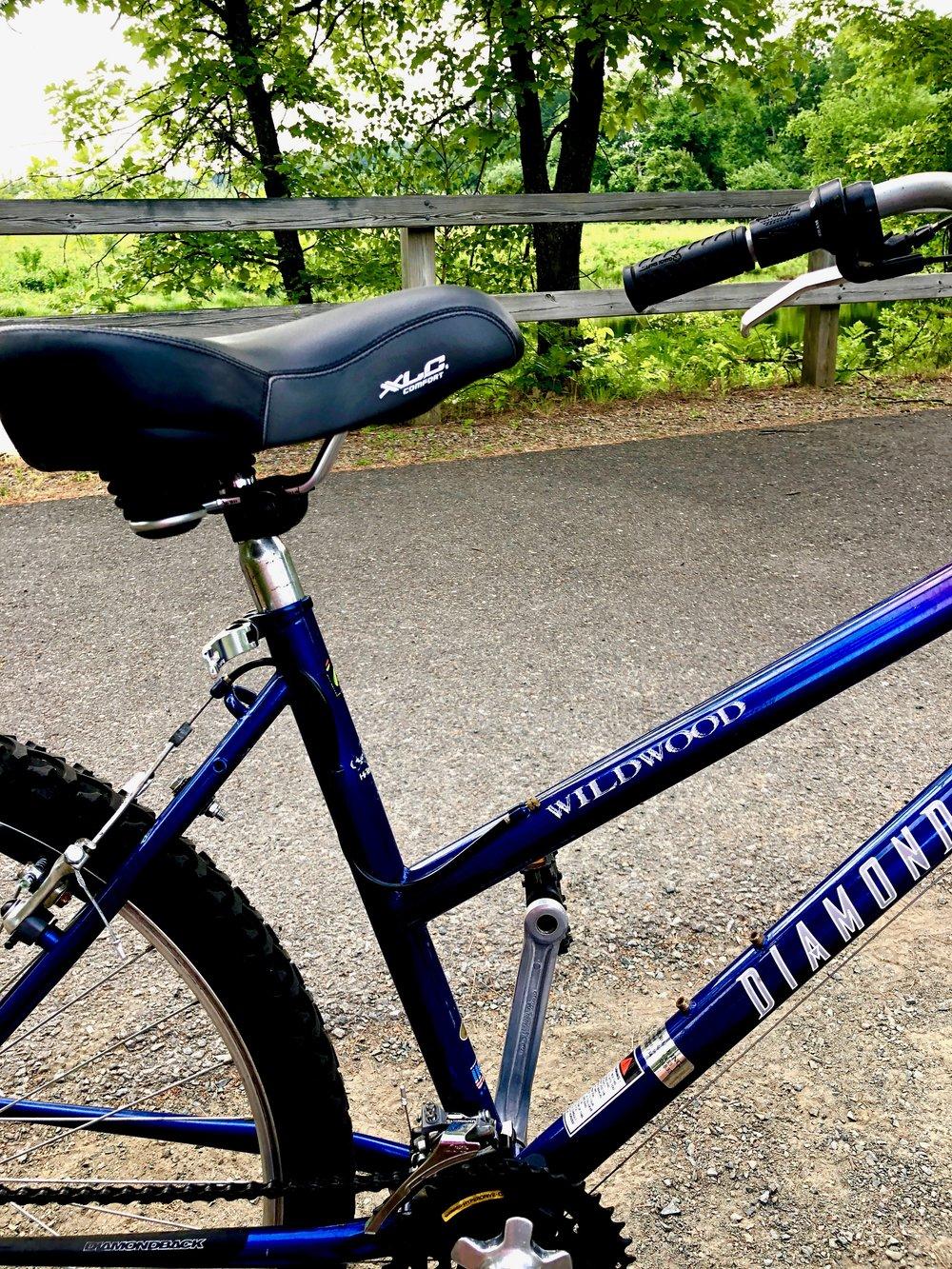 Bike Seat.jpg