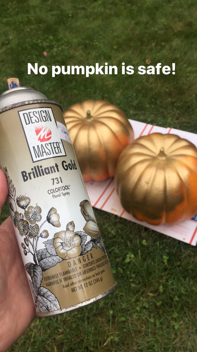metallic painted pumpkin craft