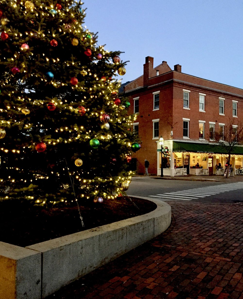 Christmas Tree in Portsmouth New Hampshire New England Fine Living.jpg