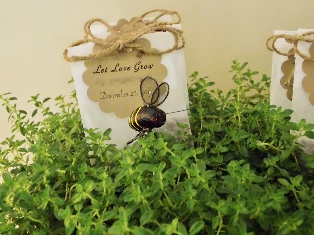 herbs used in garden theme party centerpiece.jpg