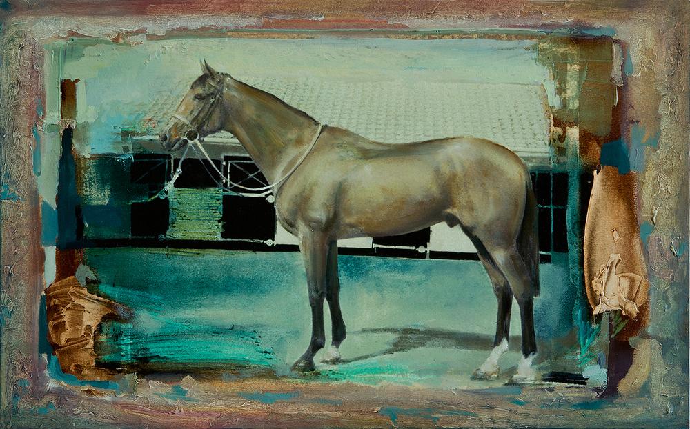Tan Stallion