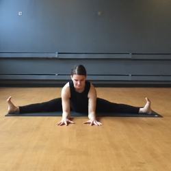 Upavistha Konasana--Seated Wide-Legged Straddle