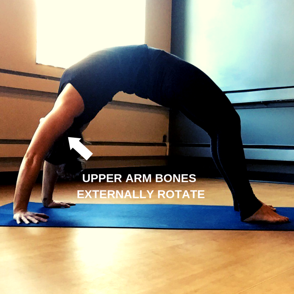 Engaged glutes and hamstrings (3).png