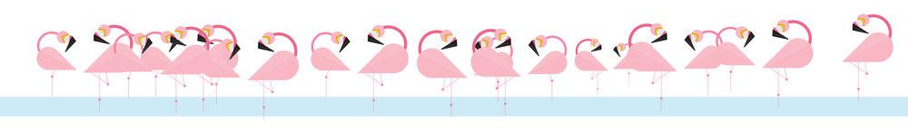 loads of flamingos.jpg