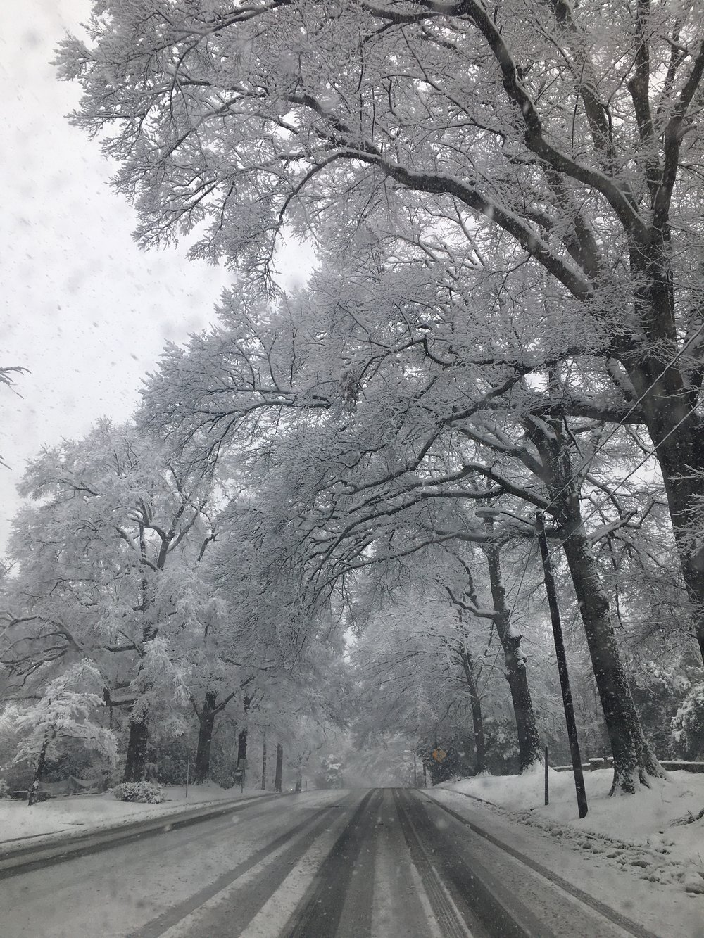 SnowDayFranklinStCH.jpg