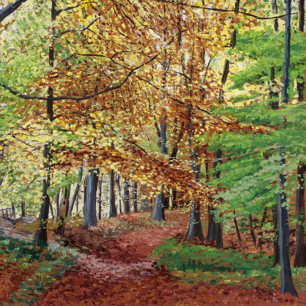 Autumn in the Chilterns I