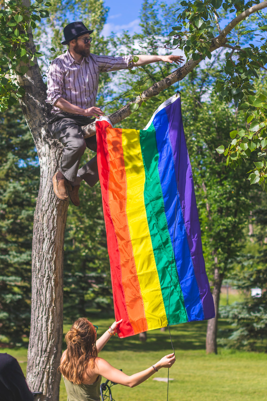 Pride Flag hanging in Tree