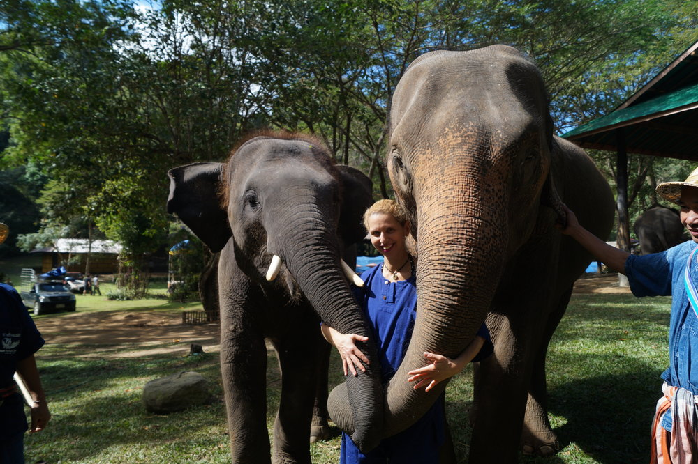 I really bonded with the two elephants we spent the day with.