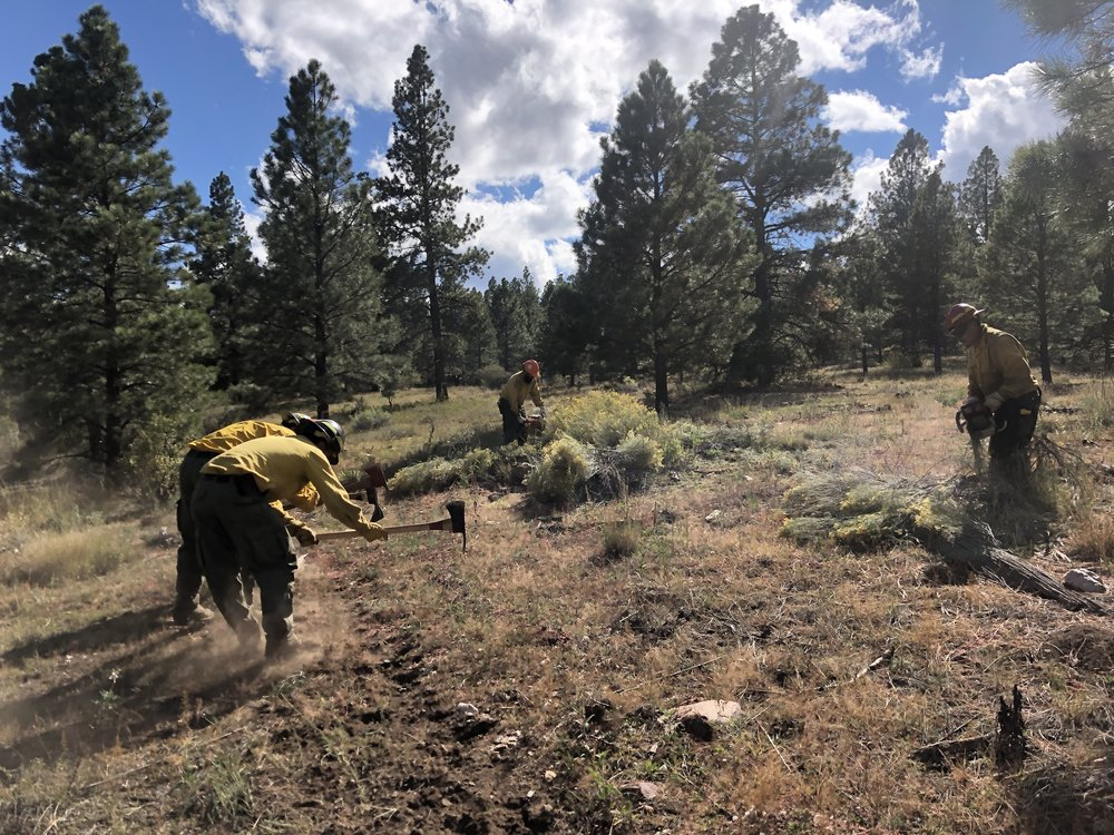 The Mt. Taylor Fire & Fuels crew preps fire-line for future prescribed burns. Photo: Chris Baca