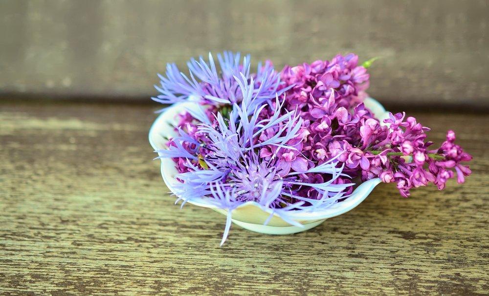 flowers-765757_1280.jpg