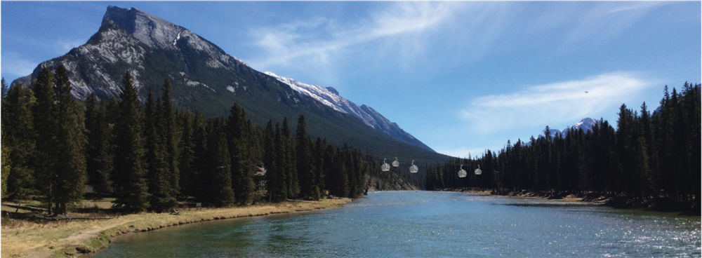 Concept image of aerial transit over the Bow River