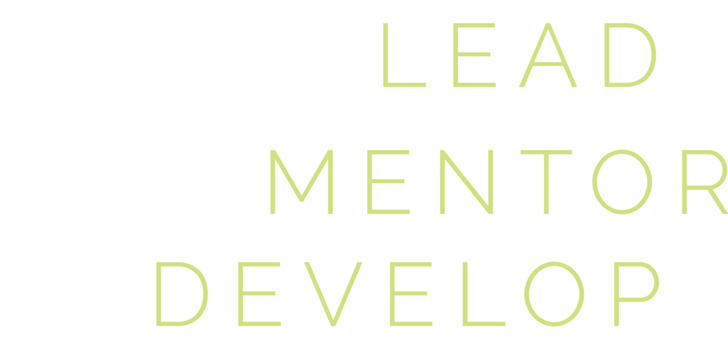 Lead Mentor Develop