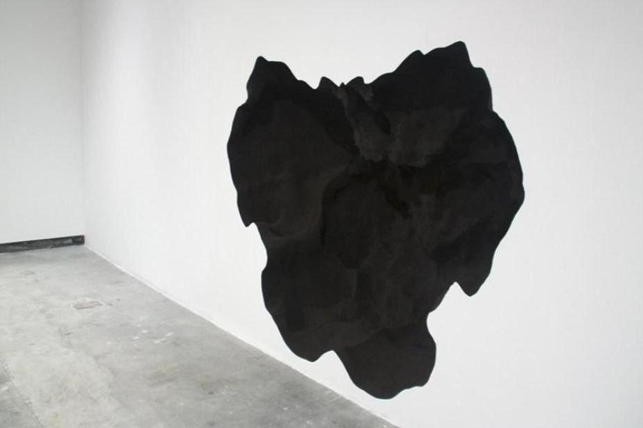 Christopher Manzione,  Excavatum , detail, 2011