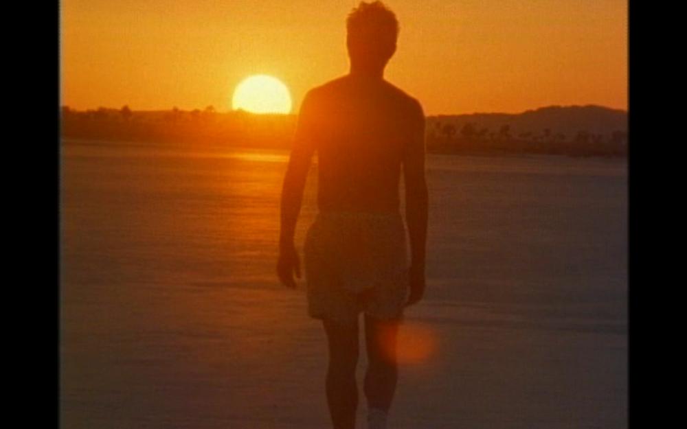 That Darn Punk  (Jeff Richardson, Kung Fu Films, 2001)