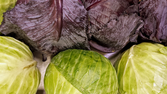 cabbage-for-blog-smaller